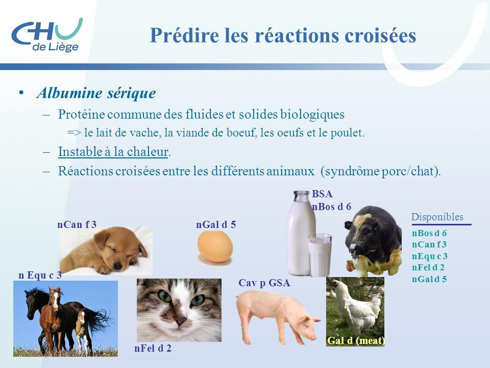 Prédire les réactions croisées Albumine sérique –Protéine commune des fluides et solides biologiques => le lait de vache, la viande de boeuf, les oeuf