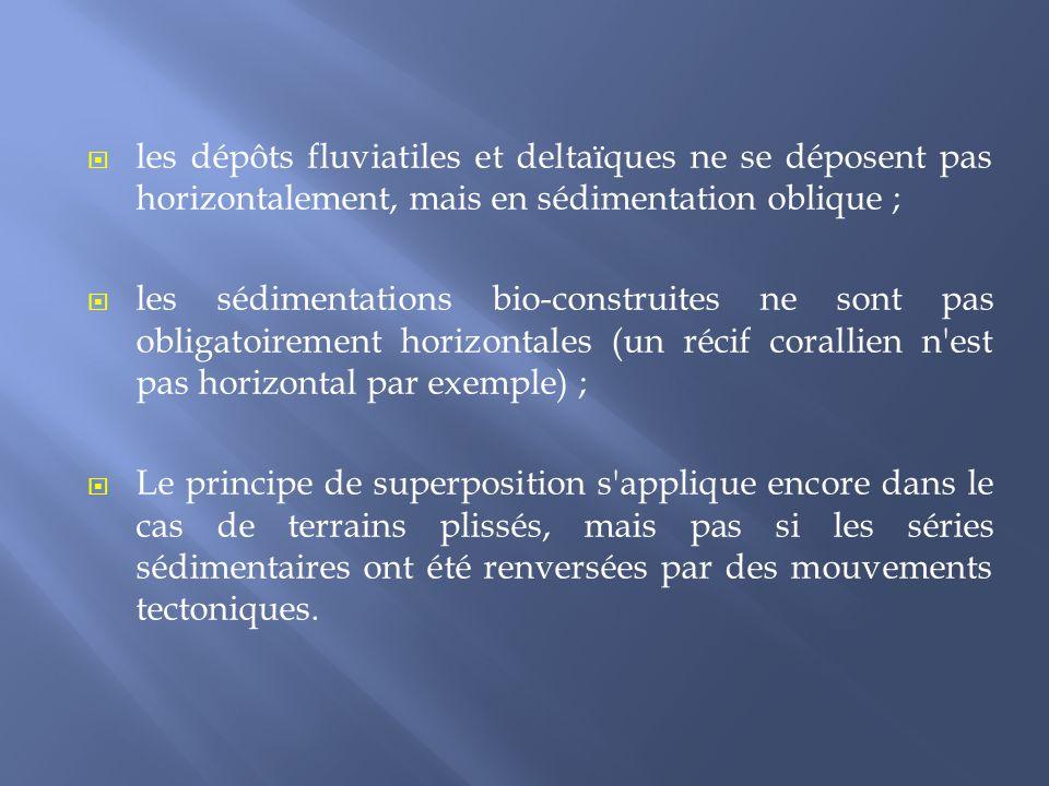  les dépôts fluviatiles et deltaïques ne se déposent pas horizontalement, mais en sédimentation oblique ;  les sédimentations bio-construites ne son