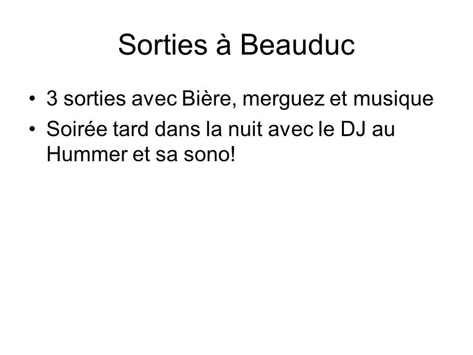 Sorties à Beauduc 3 sorties avec Bière, merguez et musique Soirée tard dans la nuit avec le DJ au Hummer et sa sono!