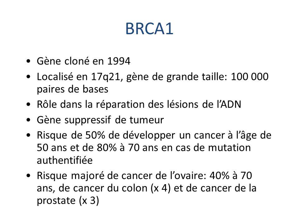 BRCA1 Gène cloné en 1994 Localisé en 17q21, gène de grande taille: 100 000 paires de bases Rôle dans la réparation des lésions de l'ADN Gène suppressi