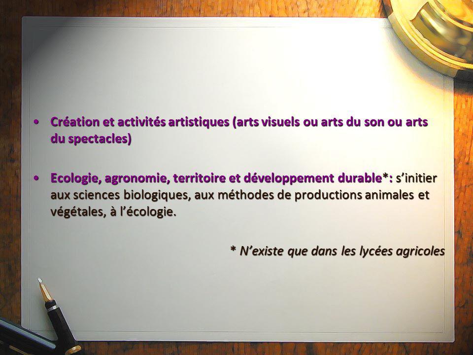 Création et activités artistiques (arts visuels ou arts du son ou arts du spectacles)Création et activités artistiques (arts visuels ou arts du son ou