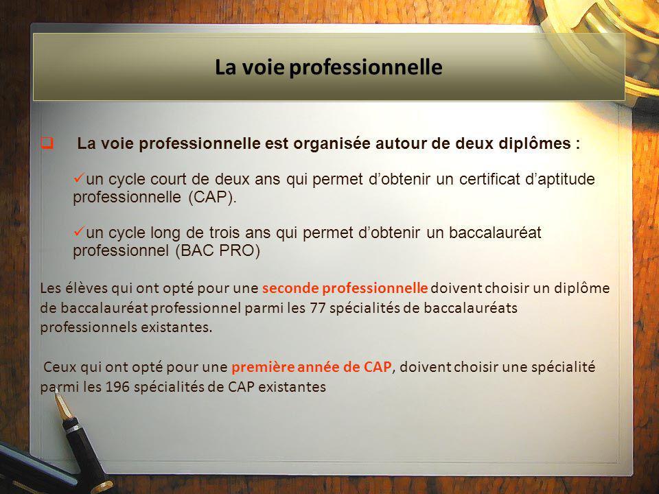  La voie professionnelle est organisée autour de deux diplômes : un cycle court de deux ans qui permet d'obtenir un certificat d'aptitude professionn