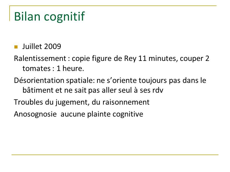 Bilan cognitif Juillet 2009 Ralentissement : copie figure de Rey 11 minutes, couper 2 tomates : 1 heure.