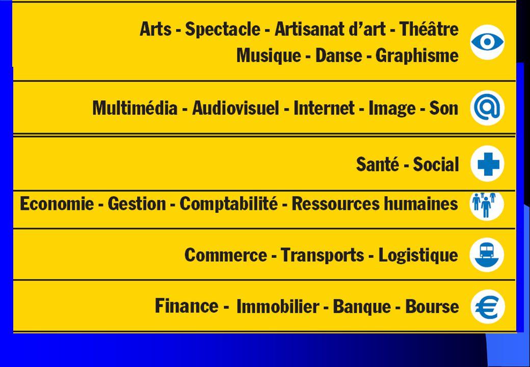 B AC STD2A Poursuites d'études l BTS en Arts appliqués (design d'espace, design de mode, design de produits…) et DMA (Diplôme des Métiers d'Art) dans différents domaines : bijou, ébénisterie, tapisserie…..