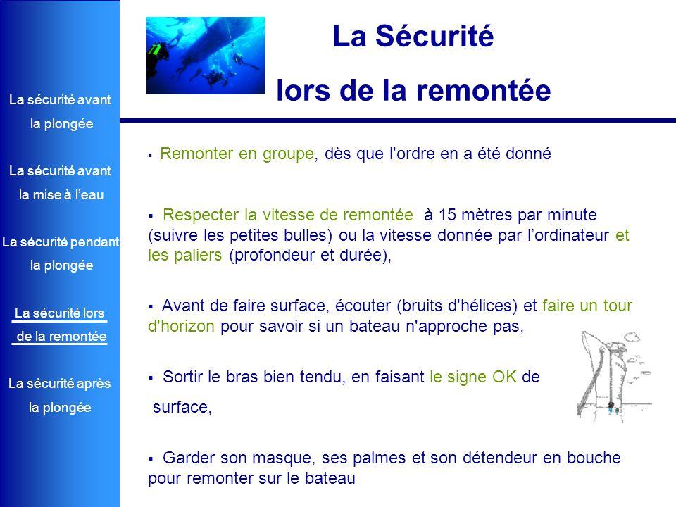 La sécurité avant la plongée La sécurité avant la mise à l'eau La sécurité pendant la plongée La sécurité lors de la remontée La sécurité après la plo