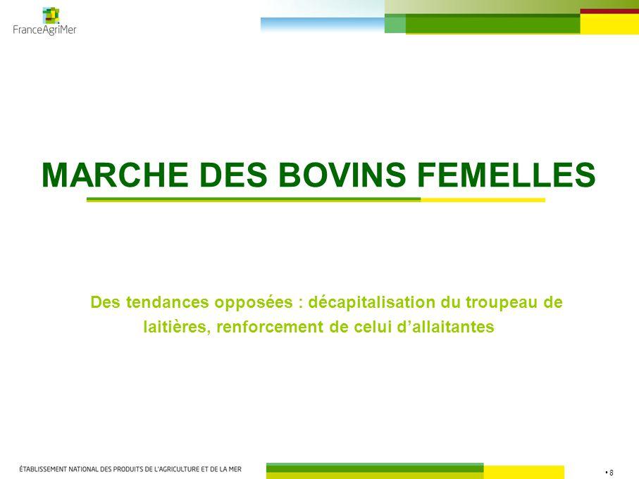 8 MARCHE DES BOVINS FEMELLES Des tendances opposées : décapitalisation du troupeau de laitières, renforcement de celui d'allaitantes