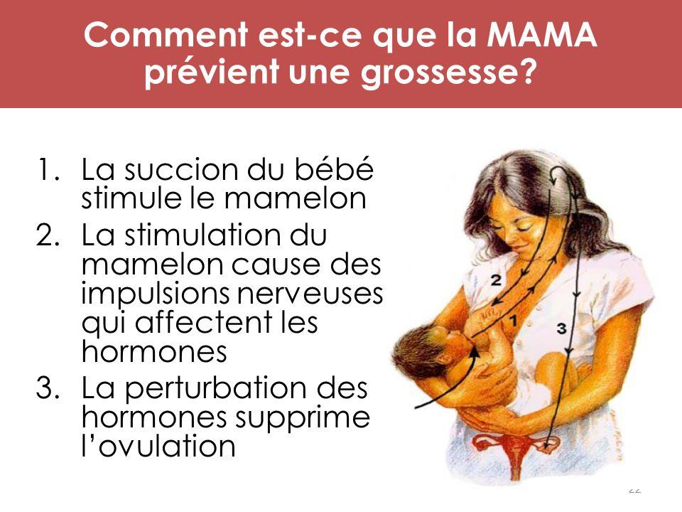 22 Mécanisme d'action de MAMA 1.La succion du bébé stimule le mamelon 2.La stimulation du mamelon cause des impulsions nerveuses qui affectent les hor