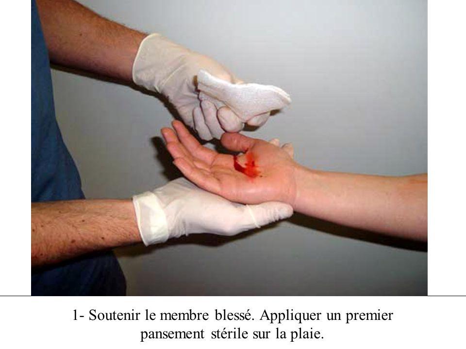 1- Soutenir le membre blessé. Appliquer un premier pansement stérile sur la plaie.