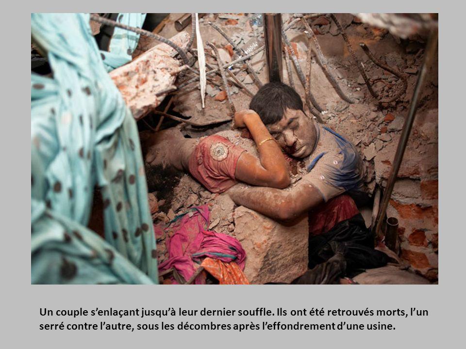 Les funérailles majestueuses de Zanjeer, le chien qui a sauvé des milliers de vies durant les explosions de 1993 à Mumbai, en Inde.