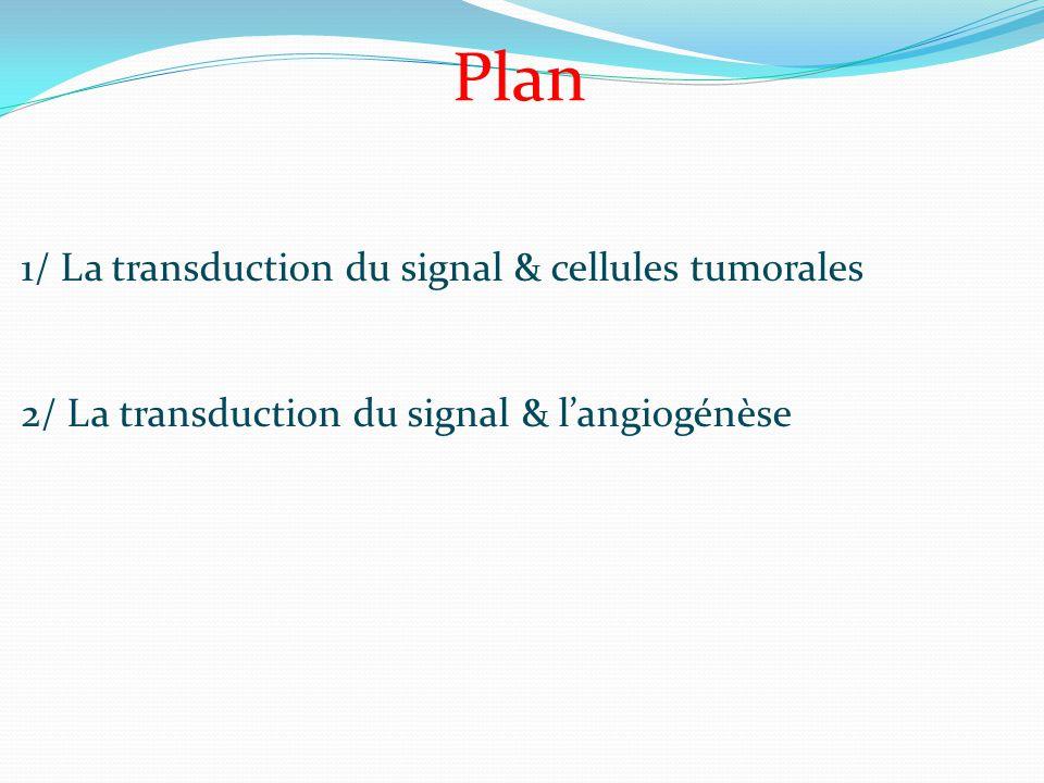La transduction du signal : les seconds messagers Une fois le récepteur trans-membranaire activé, il va s'en suivre une cascade d'évènements.