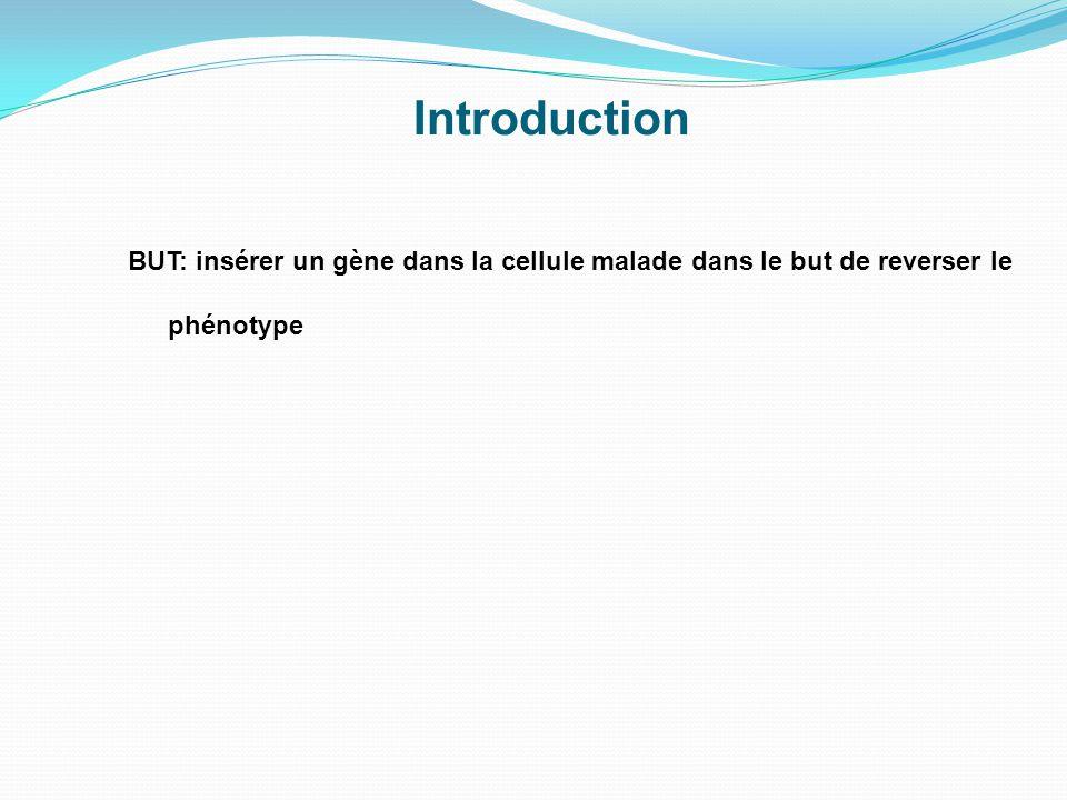 Introduction BUT: insérer un gène dans la cellule malade dans le but de reverser le phénotype