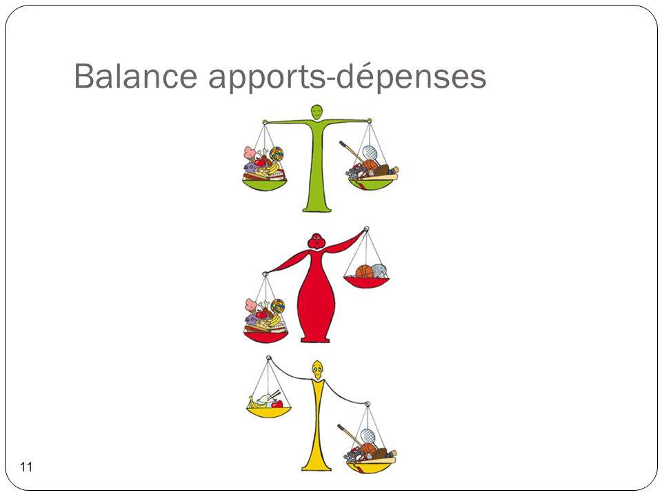 Balance apports-dépenses 11