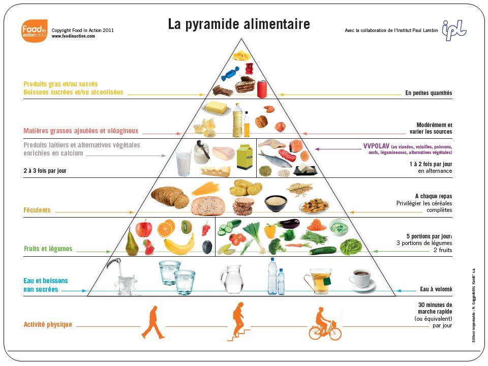 La pyramide alimentaire 7 Les aliments sont classés en 6 étages différents: Eaux et boissons non sucrées (eau, thé, café, tisanes sans sucre).