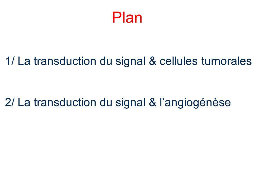 Introduction:Transduction du Signal Le passage d'une cellule eucaryote de la phase quiescente (G0) à la phase de mitose (M), en réponse à des stimuli extérieurs est un processus multi-étape Il requiert la transduction de signaux divers et l'activation de protéines intracellulaires Ce processus finement régulé est altéré au sein des cellules néoplasiques, engendrant une prolifération, une migration et une différenciation cellulaire non contrôlée 3 étapes: 1.Fixation sur un récepteur trans-membranaire d'un signal extra-cellulaire 2.Activation de seconds messagers intra-cellulaires aboutissant à l'activation de facteurs de transcriptions qui vont pouvoir agir directement sur la transcription de gènes 3.Cycle cellulaire