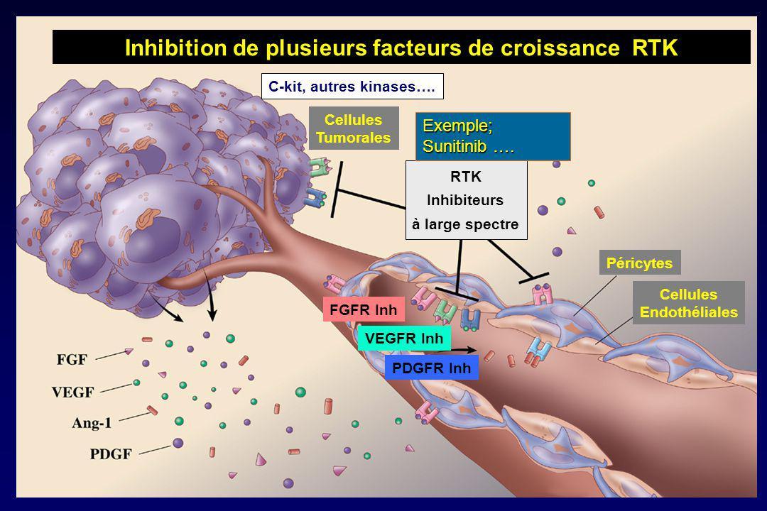 Inhibition de plusieurs facteurs de croissance RTK Cellules Tumorales Cellules Endothéliales Péricytes RTK Inhibiteurs à large spectre FGFR Inh VEGFR