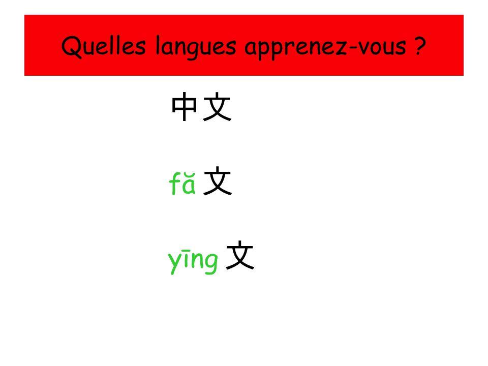 Quelles langues apprenez-vous ? 中文 fă 文fă 文 yīng 文