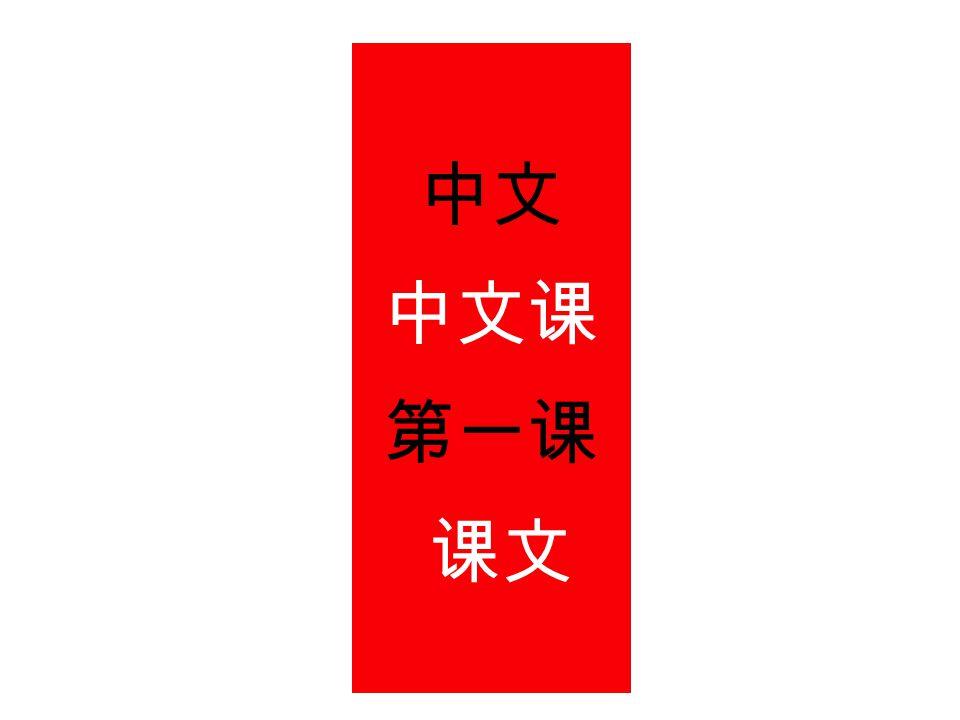 中文 中文课 第一课 课文