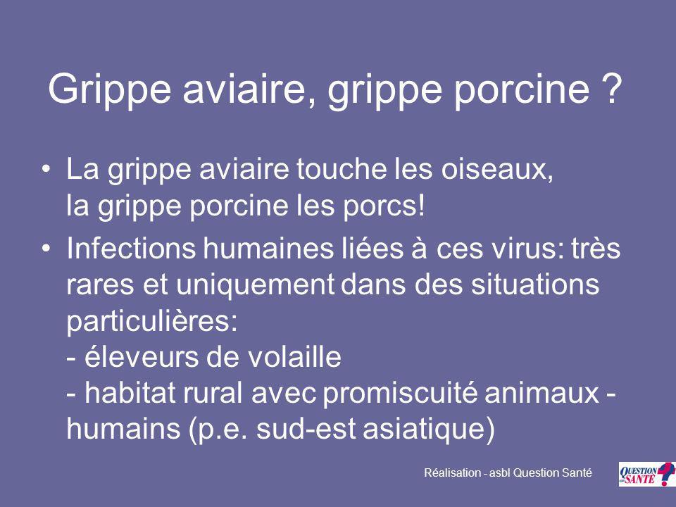 Grippe aviaire, grippe porcine . La grippe aviaire touche les oiseaux, la grippe porcine les porcs.