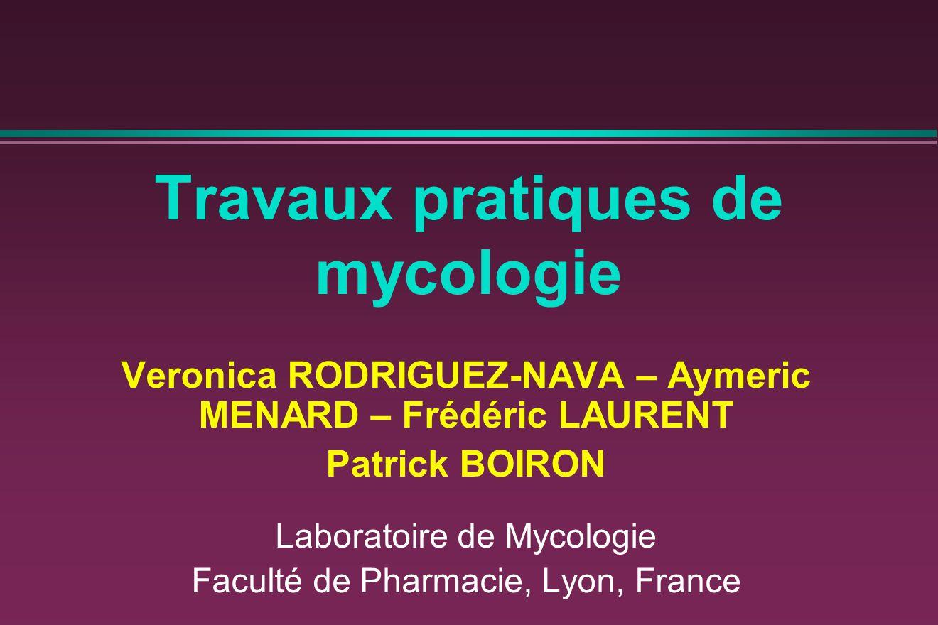 Travaux pratiques de mycologie Veronica RODRIGUEZ-NAVA – Aymeric MENARD – Frédéric LAURENT Patrick BOIRON Laboratoire de Mycologie Faculté de Pharmaci