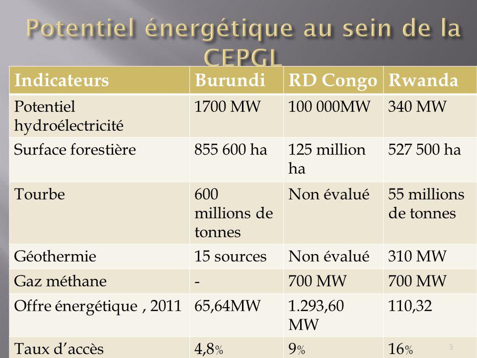 IndicateursBurundiRD CongoRwanda Potentiel hydroélectricité 1700 MW100 000MW340 MW Surface forestière855 600 ha125 million ha 527 500 ha Tourbe600 mil