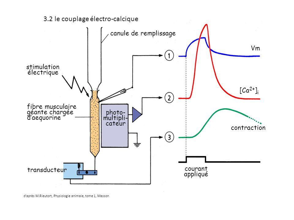 stimulation électrique fibre musculaire géante chargée d'aequorine photo- multipli- cateur transducteur Vm [Ca 2+ ] i contraction courant appliqué can