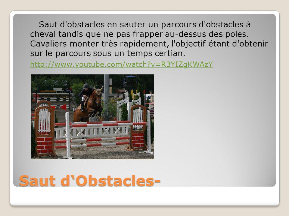 Saut d obstacles en sauter un parcours d obstacles à cheval tandis que ne pas frapper au-dessus des poles.