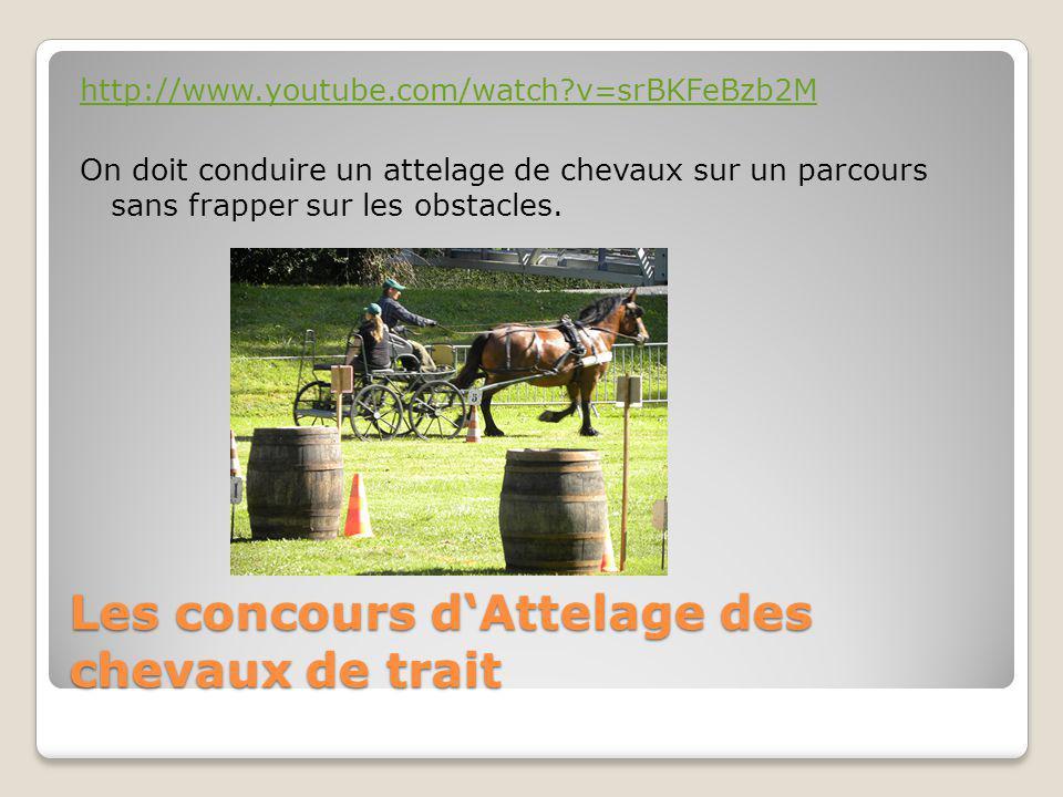 Les concours d'Attelage des chevaux de trait http://www.youtube.com/watch v=srBKFeBzb2M On doit conduire un attelage de chevaux sur un parcours sans frapper sur les obstacles.