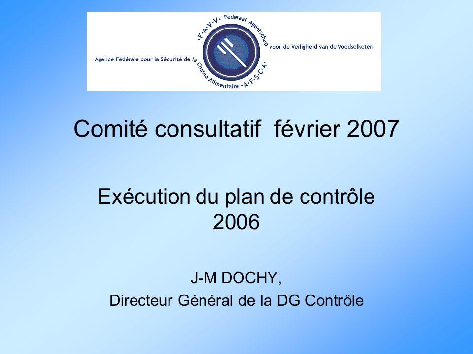 Comité consultatif février 2007 Exécution du plan de contrôle 2006 J-M DOCHY, Directeur Général de la DG Contrôle
