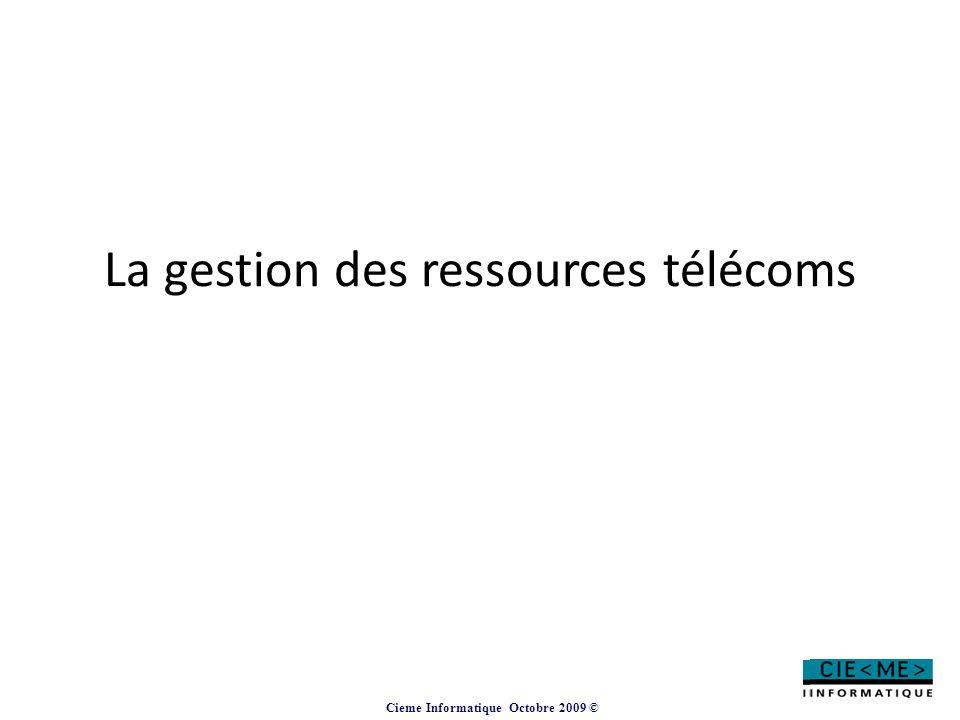 Cieme Informatique Octobre 2009 © La gestion des ressources télécoms