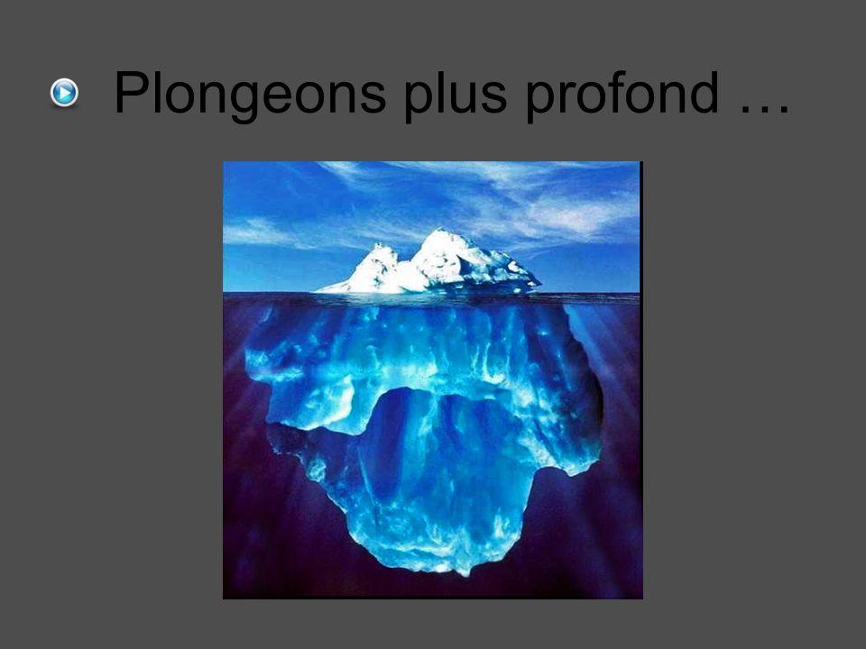 Plongeons plus profond …