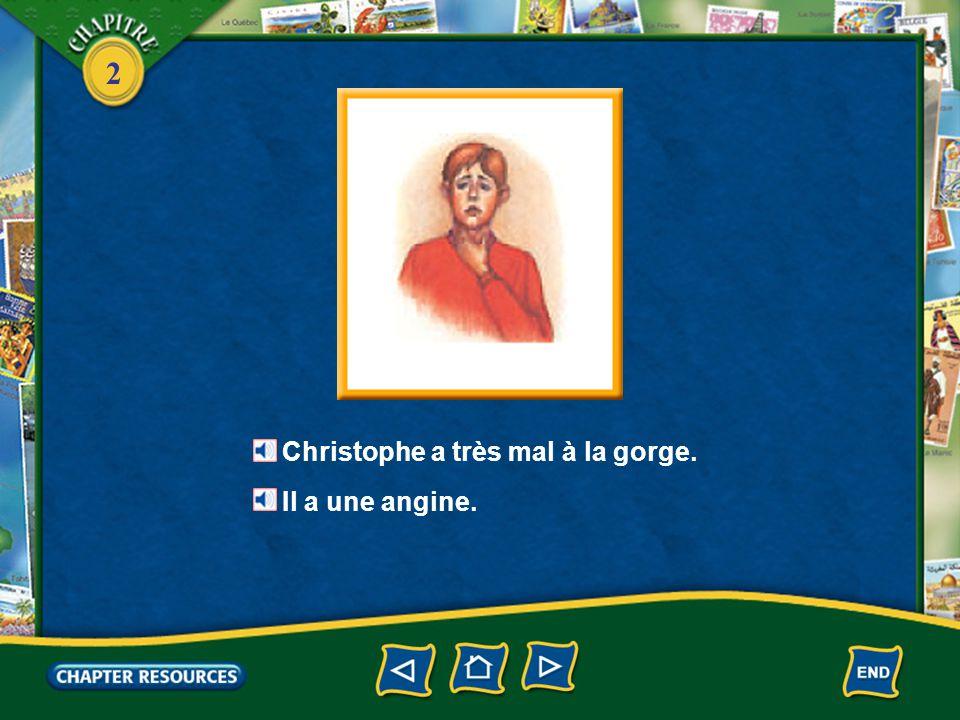 2 Le pronom en 1.The pronoun en is used to replace a noun that is introduced by de or any form of de—du, de la, de l', des.