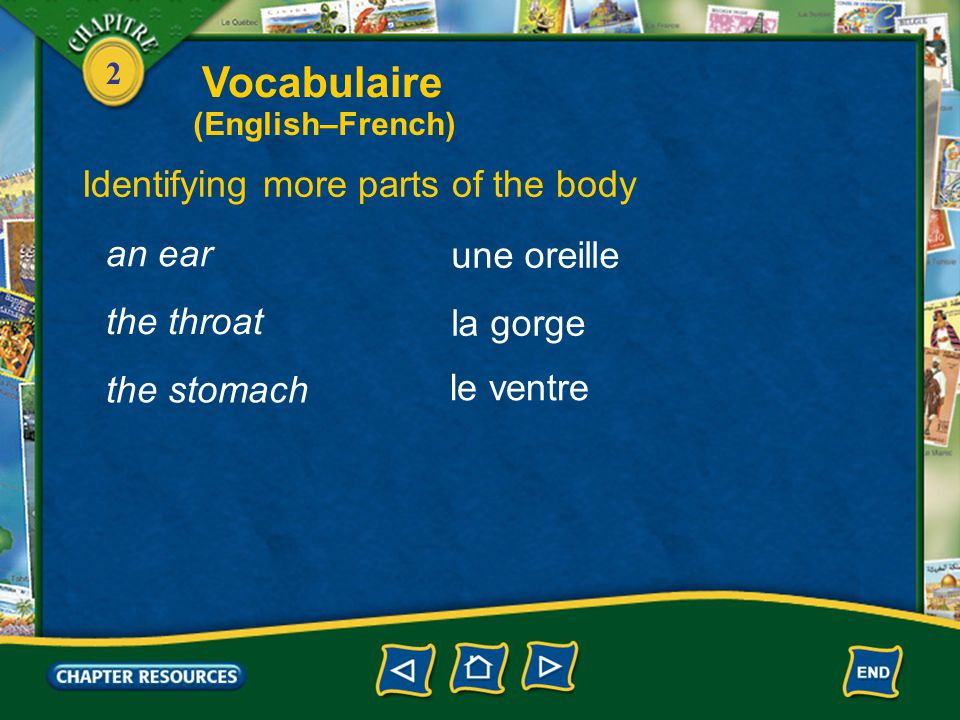 2 Identifying more parts of the body the head la tête un œil, des yeux le nez an eye, eyes the nose la bouche the mouth Vocabulaire (English–French)