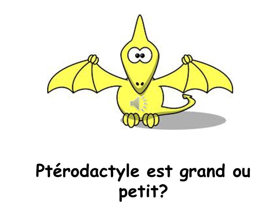 Non! C'est Ptérodactyle! Salut tout le monde!