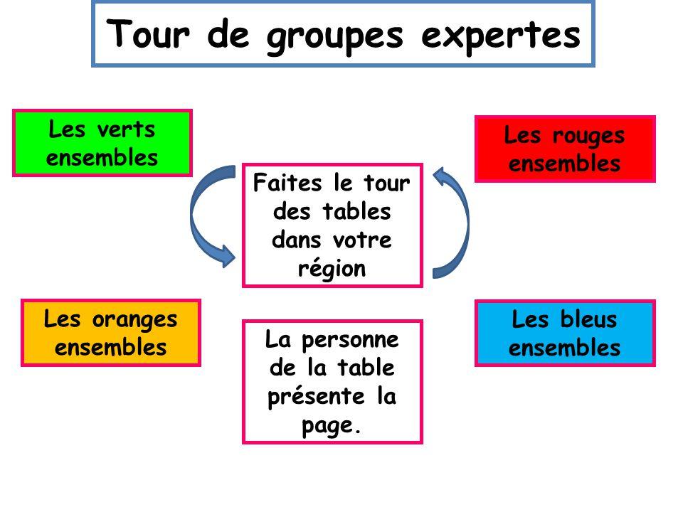 Activité! 4 régions de la France 5 groupes expertes par région Le sud Le sud-ouest Paris Les Alpes