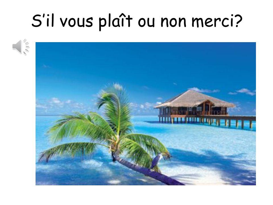 Version professeurs de français!
