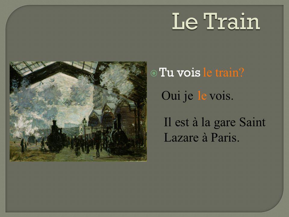  Tu vois le train? Oui je vois.le Il est à la gare Saint Lazare à Paris.