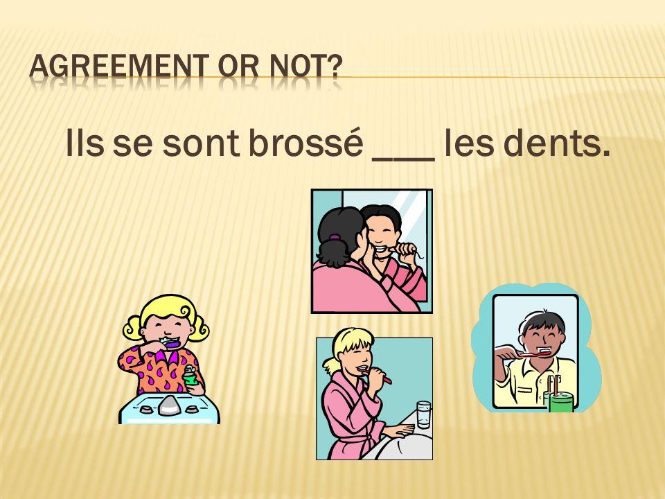Ils se sont brossé ___ les dents.