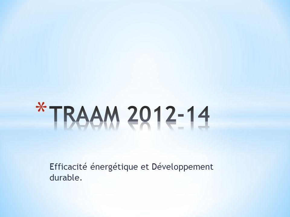 Efficacité énergétique et Développement durable.