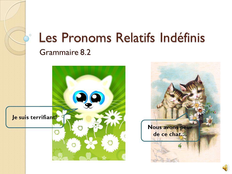 Les Pronoms Relatifs Indéfinis Grammaire 8.2 Je suis terrifiant! Nous avons peur de ce chat…