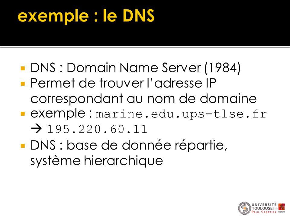  DNS : Domain Name Server (1984)  Permet de trouver l'adresse IP correspondant au nom de domaine  exemple : marine.edu.ups-tlse.fr  195.220.60.11
