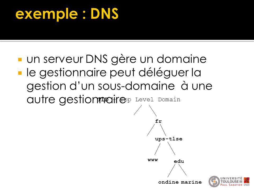  un serveur DNS gère un domaine  le gestionnaire peut déléguer la gestion d'un sous-domaine à une autre gestionnaire fr ups-tlse edu www marine ondi