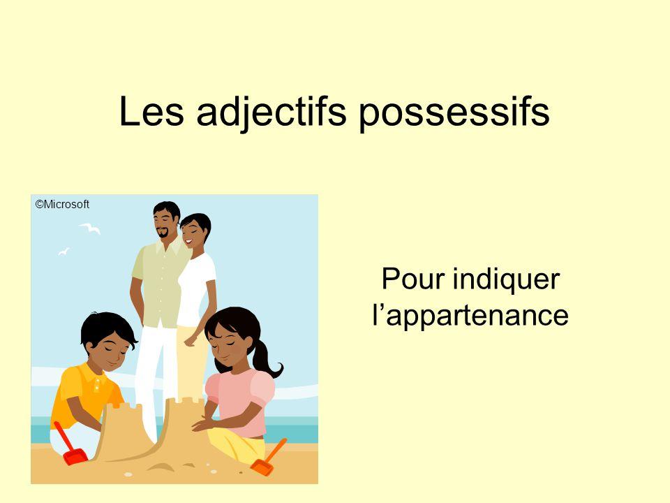 Les adjectifs possessifs Pour indiquer l'appartenance ©Microsoft