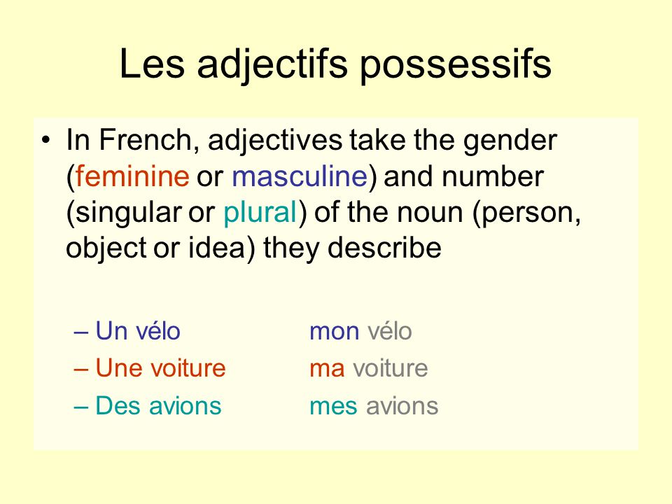 Possessive adjectives vary according to whom or to what they are related.