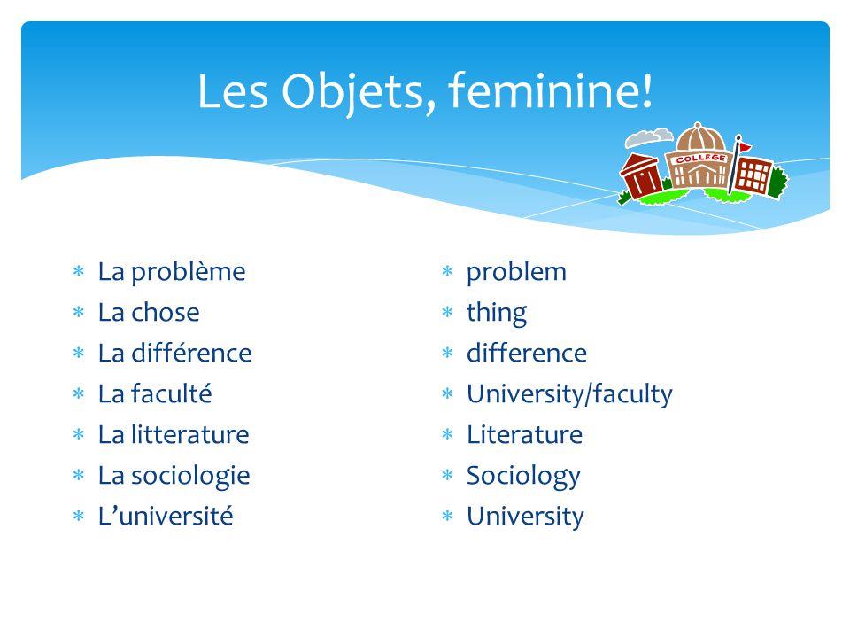 Les Objets, feminine!  La problème  La chose  La différence  La faculté  La litterature  La sociologie  L'université  problem  thing  differ
