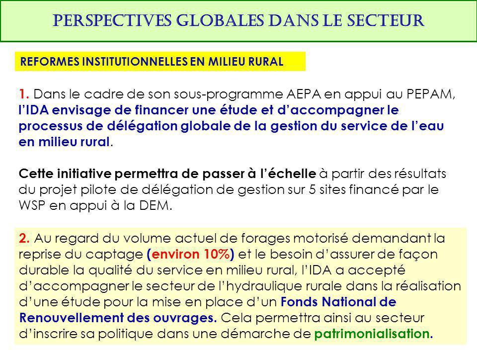 PERSPECTIVES GLOBALES DANS LE SECTEUR REFORMES INSTITUTIONNELLES EN MILIEU RURAL 1. Dans le cadre de son sous-programme AEPA en appui au PEPAM, l'IDA