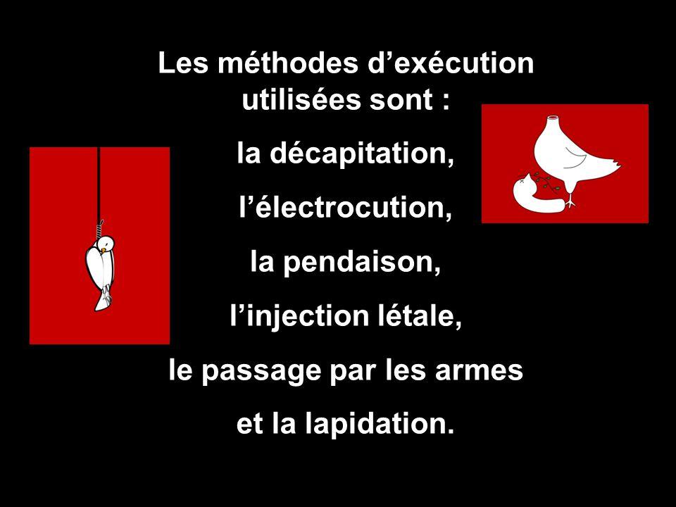 Les méthodes d'exécution utilisées sont : la décapitation, l'électrocution, la pendaison, l'injection létale, le passage par les armes et la lapidatio