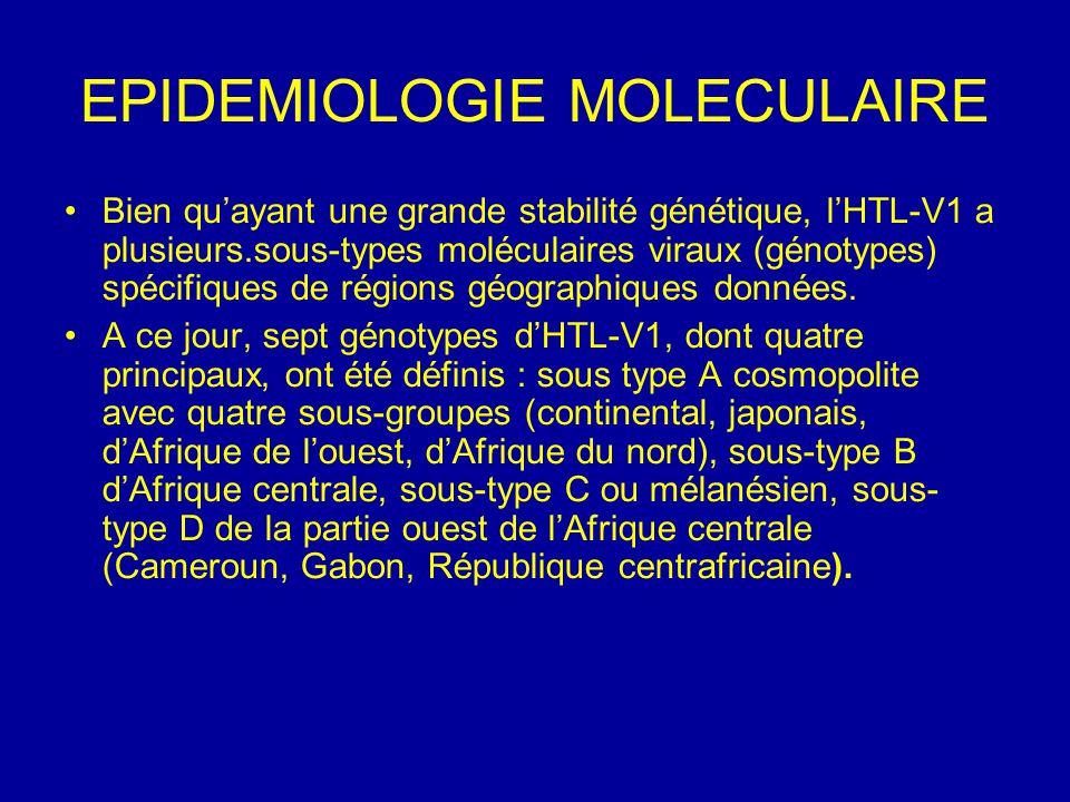 EPIDEMIOLOGIE MOLECULAIRE Bien qu'ayant une grande stabilité génétique, l'HTL-V1 a plusieurs.sous-types moléculaires viraux (génotypes) spécifiques de