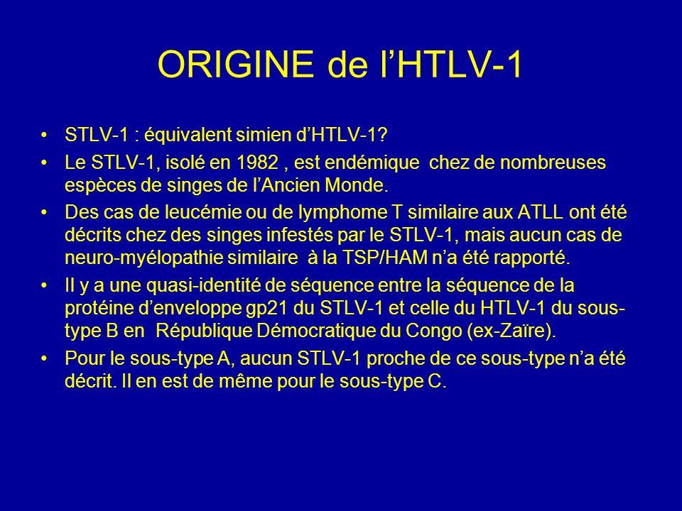 ORIGINE de l'HTLV-1 STLV-1 : équivalent simien d'HTLV-1? Le STLV-1, isolé en 1982, est endémique chez de nombreuses espèces de singes de l'Ancien Mond