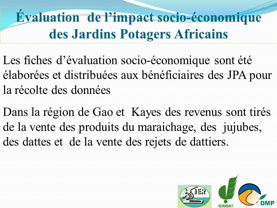 Évaluation de l'impact socio-économique des Jardins Potagers Africains Les fiches d'évaluation socio-économique sont été élaborées et distribuées aux
