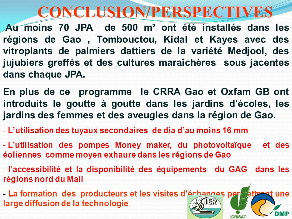 Au moins 70 JPA de 500 m² ont été installés dans les régions de Gao, Tombouctou, Kidal et Kayes avec des vitroplants de palmiers dattiers de la variét